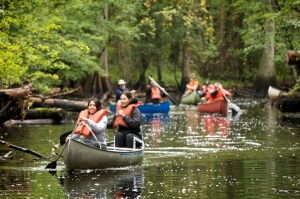 exploring ontario by canoe