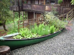Strathcona Park Lodge canoe planter